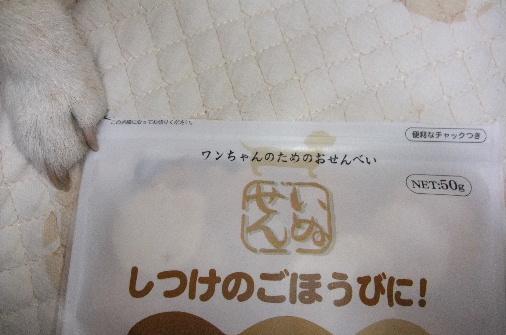 2010_1227momo150076.JPG