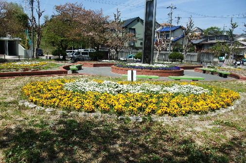 2011_0417momo170141.JPG