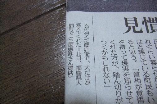 2011_0418momo170046.JPG