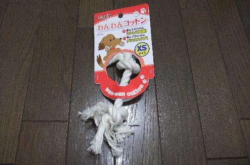 2011_0911momo210104.JPG