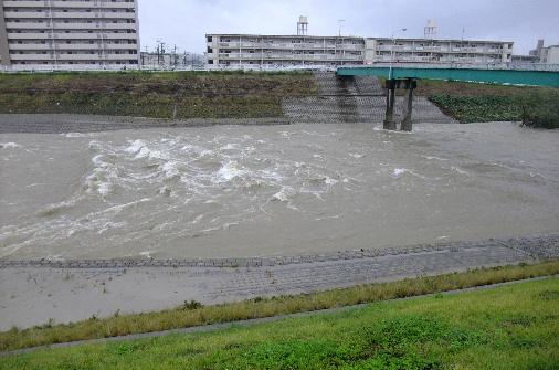 2011_0920momo210175.JPG