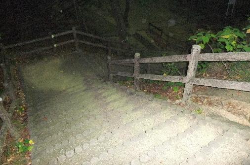 2011_1028momo210052.JPG