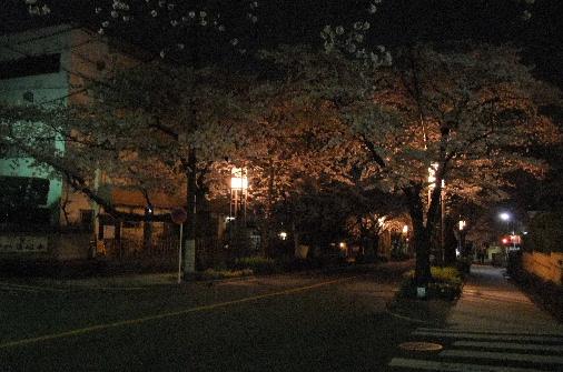 2012_0410momo0007.JPG