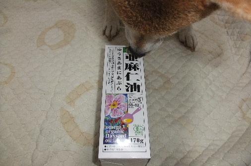 2012_12010075.JPG