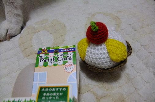 2013_01240108.JPG