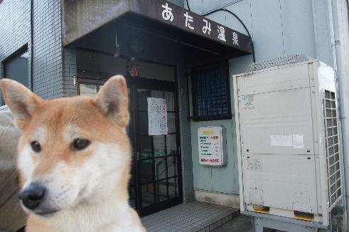 2010_0104momo170052.JPG