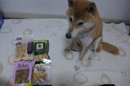 2011_0223momo170076.JPG