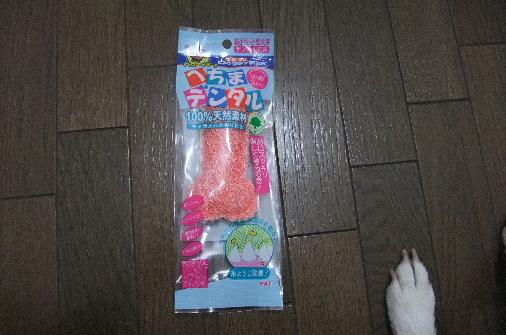 2011_0911momo210025.JPG
