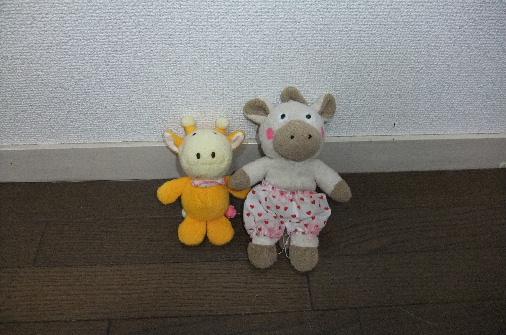 2011_0911momo210148.JPG